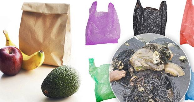 Papírová taška zlem, igelitka je ekologičtější. Bez recyklace ale končí v žaludcích ryb