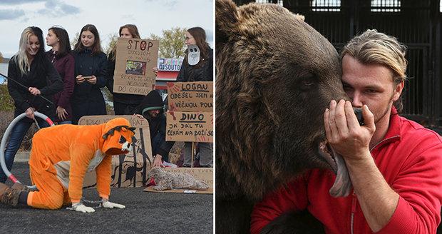 Boj o zvířata v manéži: Ochránci volají po zákazu, cirkusáci mluví o bludech