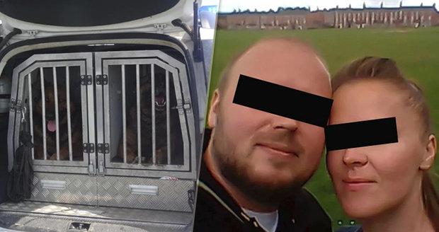 Zuzanu unesl Stanislav, proti kterému svědčil její manžel. Při její záchraně pomohli policejní psi