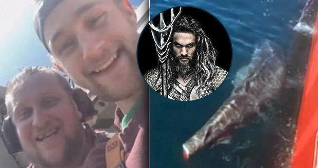 Rybáři usekli žralokovi ocasní ploutev a hodili ho do moře: Jděte do pr*ele! vzkázal jim Aquaman