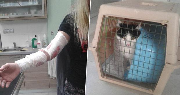 Na majitelku zaútočila její kočka. Pomoci ji museli strážníci.