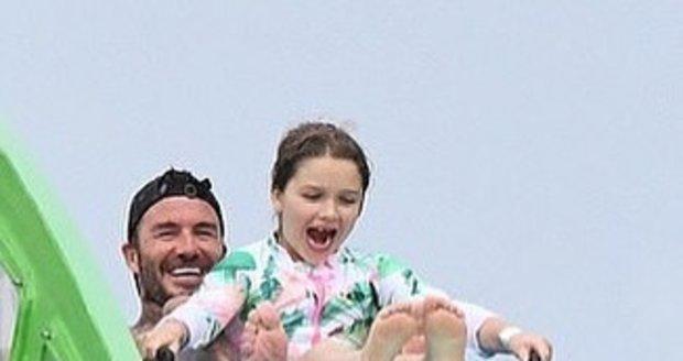 David s dcerkou Harper