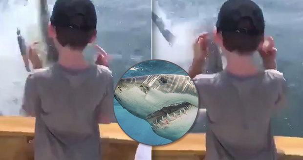 Děsivé záběry: Na loď otců s dětmi vyskočil obří žralok