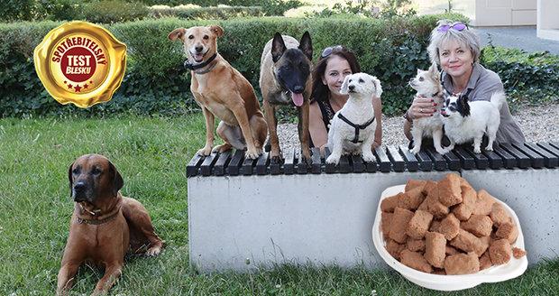 Velký test psích konzerv ukázal, která je nejchutnější i nejkvalitnější.