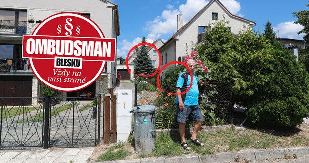 """Vitverovi mají za to, že soused se nebude moci o túje starat, stejně jako o tyto. """"Nemáme v plánu dělat dělníky panu Bernáškovi a stříhat jeho stromy,"""" říkají oba."""