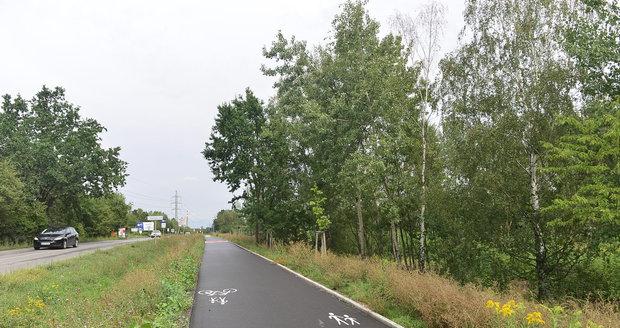 V Běchovicích mají podél silnic vysokou trávu. (Ilustrační foto)