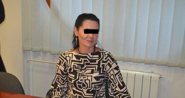 Rozálie H. z Ostravy je obžalovaná z týrání vlastního malého syna. Bít ho a nadávat mu měla sedm let.