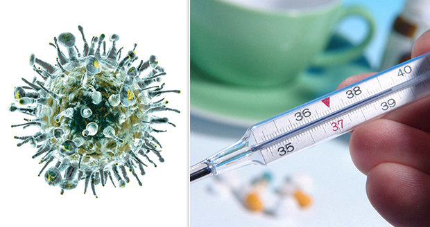 Kdy přijde chřipková epidemie?