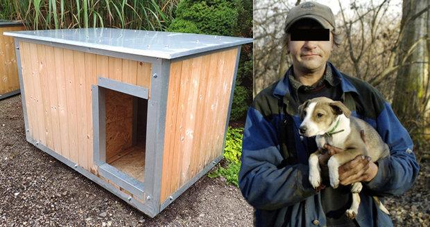 Brno staví speciální boudy pro psy bezdomovců.