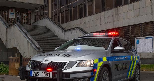 Pražská policie. (ilustrační foto)