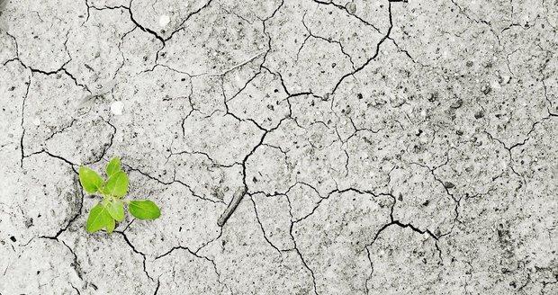 Nedostatek vody a plastový odpad – projekty na záchranu životního prostředí