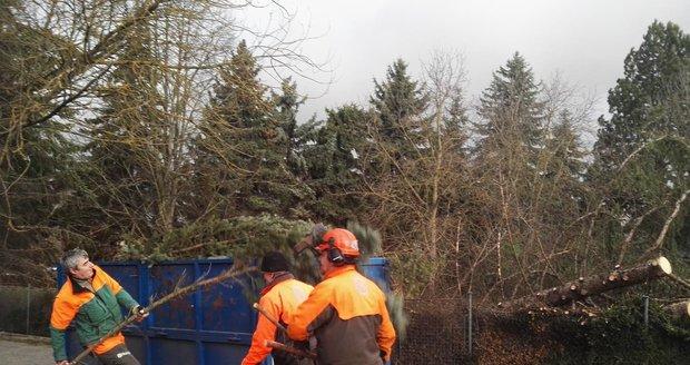 Nad Českem se prohnal orkán Sabine. Hasiči po celý den likvidovali následky: popadané stromy, zničené vedení, popadané sloupy, zničená auta, vytopené sklepy a ulítlé střechy.