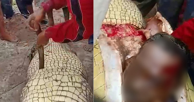 Čtyřmetrový krokodýl sežral rybáře (†55): Když plaza rozřízli, uvnitř našli jeho tělesné části