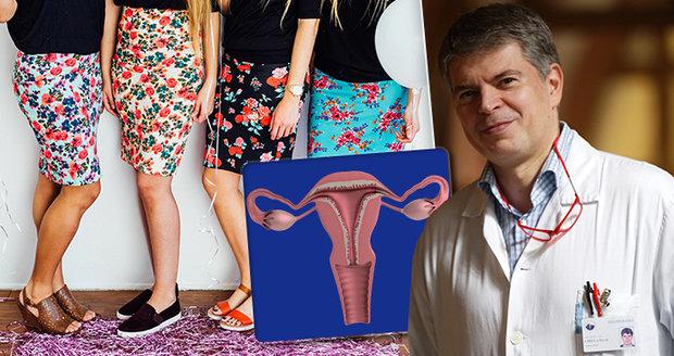 Zhoubný nádor vaječníků je v Česku každoročně diagnostikován u více než 900 žen.