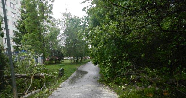 Bouřka s vichrem a lijákem udeřila v Jihočeském kraji (23.5.2020)
