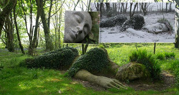 Fascinující proměna sochy podle plynoucích ročních dob.