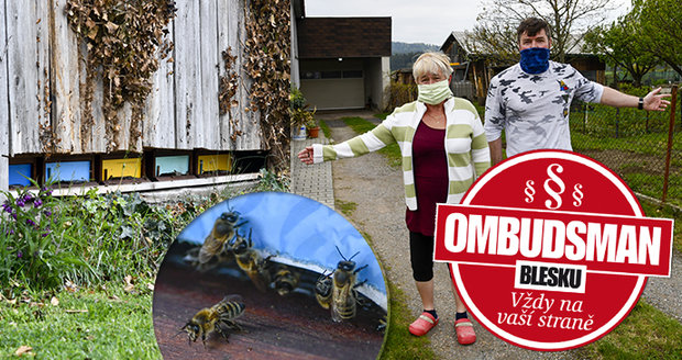 Kvůli sousedovým včelám nemůže rodina celé léto na zahradu. Na případ se podíval Ombudsman Blesku Roman Moussawi.