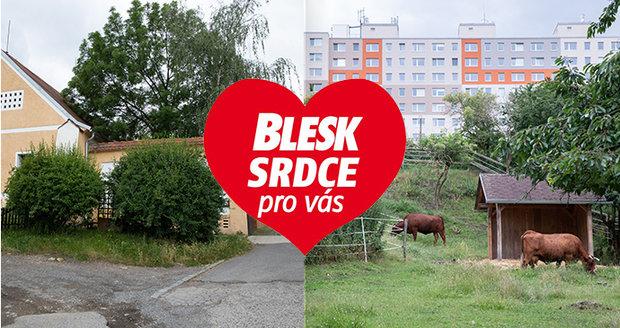 Přírodní skvost najdete v pražské Hostivaři.