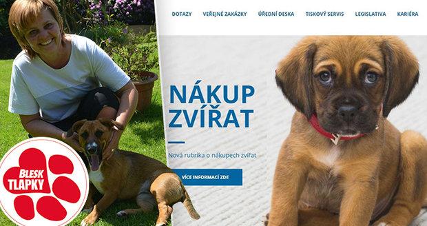 """Nekupujte psa na parkovišti: Veterináři jdou do boje proti množírnám s novou """"kuchařkou"""""""