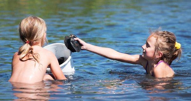 Dobrovolníci stěhovali škeble a velevruby z mělčin Boleveckého rybníka v Plzni na hlubší vodu (6. 8. 2020)