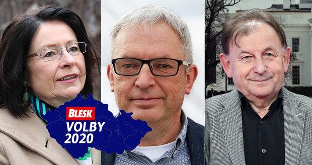 Suverénní Němcová, Žantovský jde dál, Zemanův hlas nepomohl. Známé tváře se perou o Senát