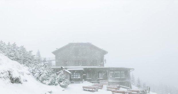 Chata Jiřího na Šeberu hlásí sněhovou pokrývku.
