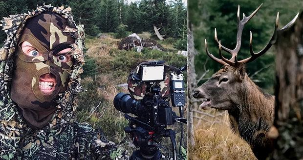 Lukáš Pich vytvořil úžasné záběry jelení říje v šumavských lesích.