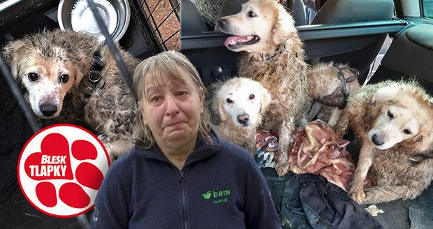 Tyranka Jana s dcerou držely psy zavřené a množily je. Čeká je trest podle nového zákona?