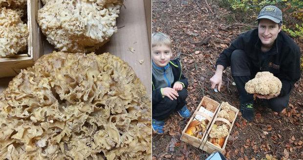 Oliver (5) našel čtyři kila vzácných hub: Doma si rodina uvařila polévku za tisíce!