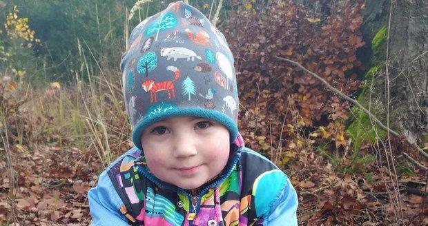Malý Ondra se se svou babičkou do lesa ještě určitě vrátí.