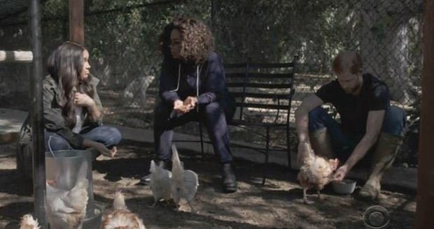 Meghan, Harry a Oprah v Archieho slepičím hotýlku