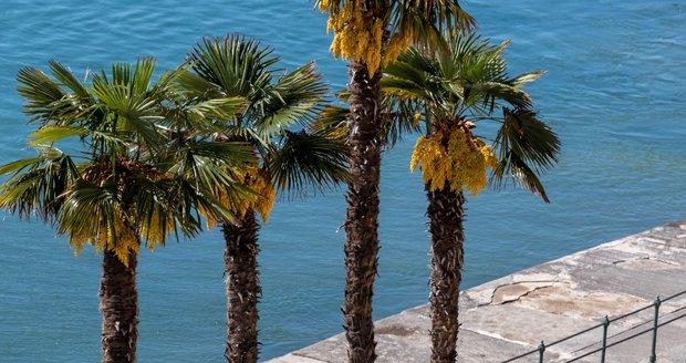 Chorvatsko bude v červenci lákat turisty na pláže tropickými teplotami