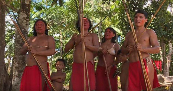 kmeň sex videá