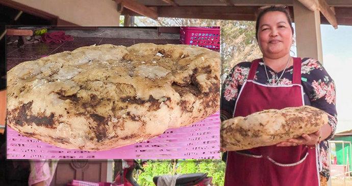 Žena našla na pláži velrybí zvratky: Mají hodnotu 5,6 milionu korun!