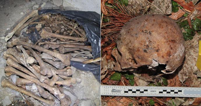 V lese u Písku leželo 11 lebek: V nedalekém domě našli další! Pytel byl plný kostí