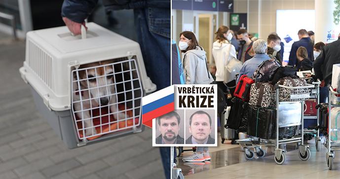 Poslední várka Rusů z ambasády odlétá z Prahy. Do Moskvy zamíří i děti, psi a hlodavec
