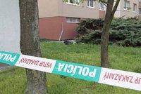 Natálii (†28) z Česka umlátil její přítel: Zabití přihlížela dcera (4)! I ji týral