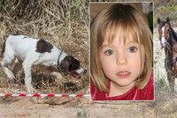Pátrání po Maddie pokračuje: Zapojeni byli i vycvičení psi a jezdecká policie!