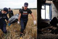 Z letu MH17 objevili dvě stovky mrtvol: Těla lidem padala i na domy!