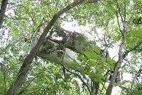 Dalších 100 těl a trosky letu MH 17 našli na stromech! Proč to trvalo tak dlouho?!