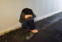 Dívku (18) se v Plzni pokusil znásilnit cizinec, strážník jí přiběhl na pomoc