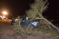 Naboural do stromu, ale žízeň byla silnější: Zamkl auto a šel pít!
