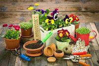 6 rad, jak probudit zahradu! Co s trávníkem a stromy? Kdy sázet?