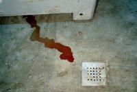 V domě našla policie pět mrtvých miminek: Matka i otec jsou pod dohledem!
