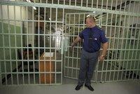 Počet trestanců v Česku roste: Budou se stavět nové věznice nebo postačí »náramky«