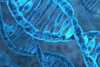 Vědci vyvinuli test určující biologický věk