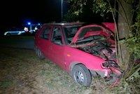 Ženu (†32) na Českolipsku přejelo vlastní auto! Snažila se zachránit dítě