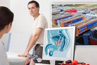 Zbraň proti rakovině prostaty. Vědci z Brna mají patent pro budoucí lék