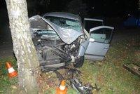 Řidič zemřel po nárazu do stromu: Nebyl připoutaný
