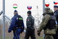 Jde Čech, Maďar, Polák a Slovák... Ne, to není vtip, ale hlídka proti migrantům
